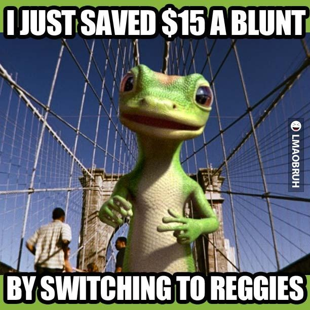 Geico Quotes 34 Best Geico Gecko Images On Pinterest  Geckos Ha Ha And Funny Stuff
