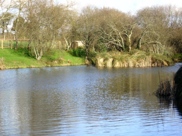 Glorious views in the Cornish Countryside at Meadow Lakes Holiday Park in Cornwall www.meadow-lakes.co.uk