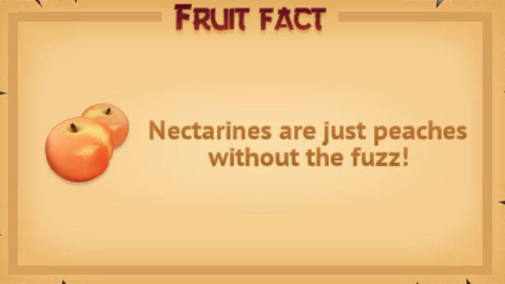 Fruit fact #8