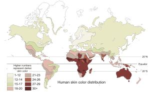 Week 2, Human skin color - Wikipedia, the free encyclopedia