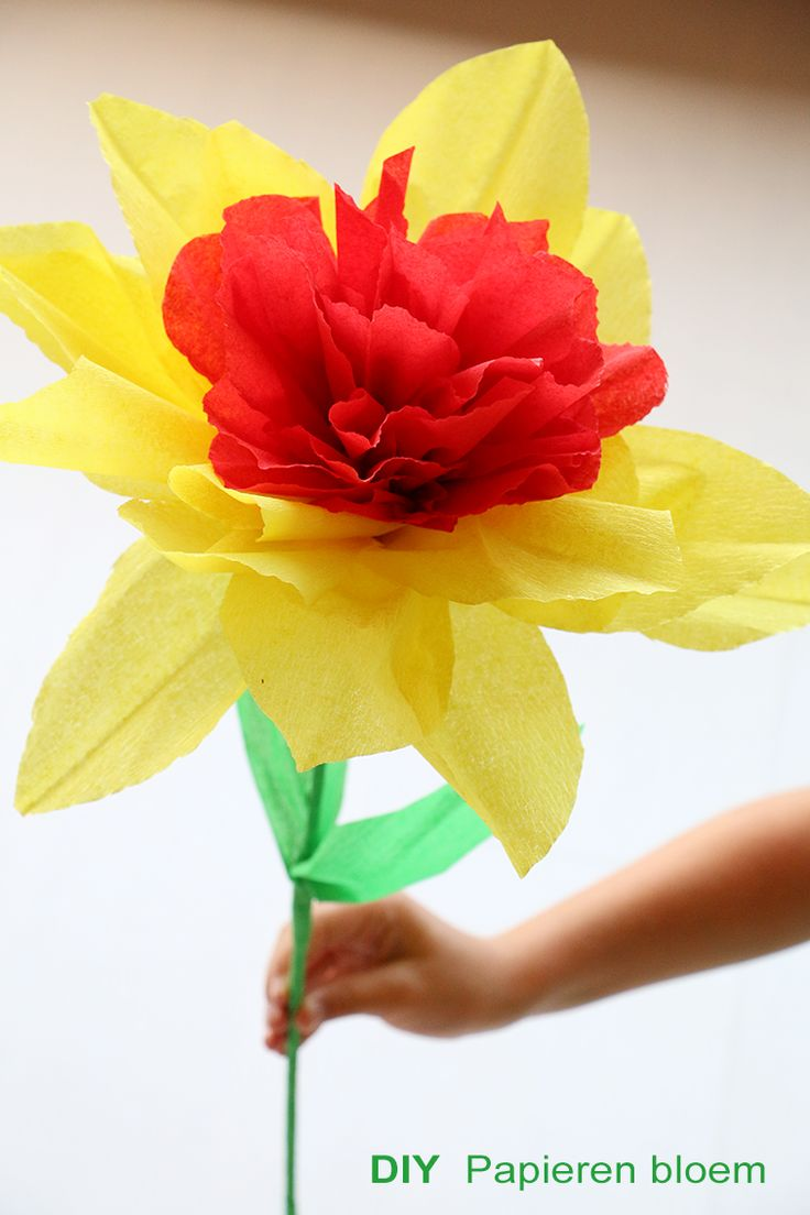 Soft Cactus: Papieren bloem 1