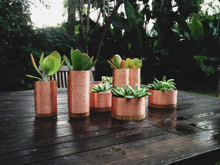 'Cu' series copper planters.   Copper plumbing piping & sustained Australian timber.   studiokyss design and make, 2012  www.kyss.net.au