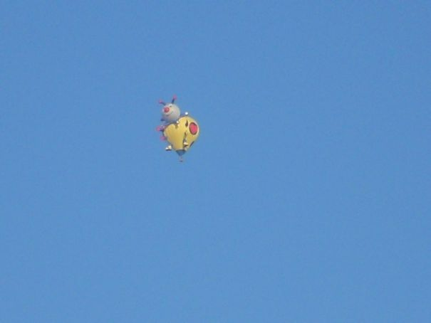 A very fine yellow ladybug in the sky of north Ferrara, Italy