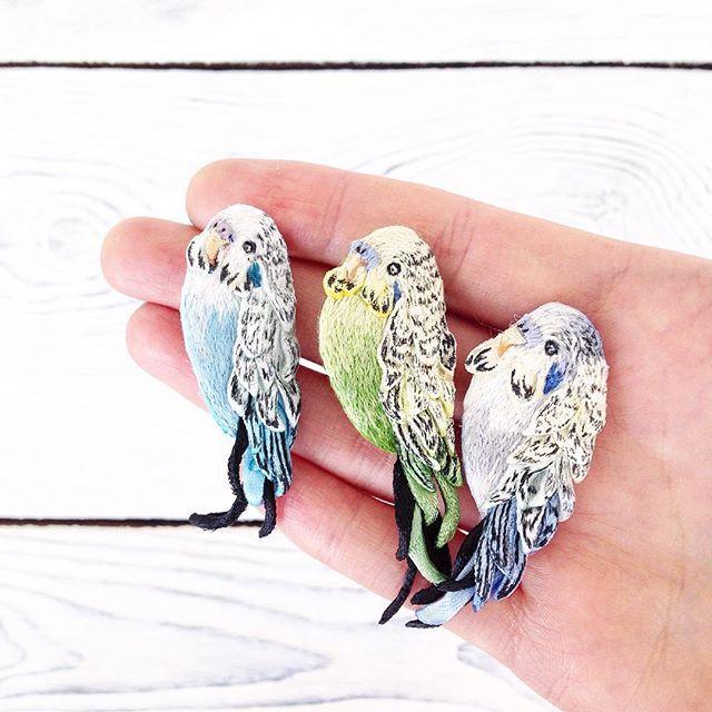 Три тенора: Доминго, Каррерас и Паваротти.. Три толстячка с красивыми голосами мальчики волнистые попугайчики по 1700₽+доставка. Остался голубенький  #polalab #handmade  #brooch #embroidery #embroideryart #laceembroidery #вышивка #вышивальныйманьяк #вышивкагладью #объемнаявышивка  #брошьручнойработы #брошка #russiandesigners #birdproject #art_we_inspire  #волнистыйпопугай #parrot #попугай