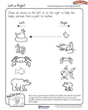 Animal Babies Worksheet Preschool
