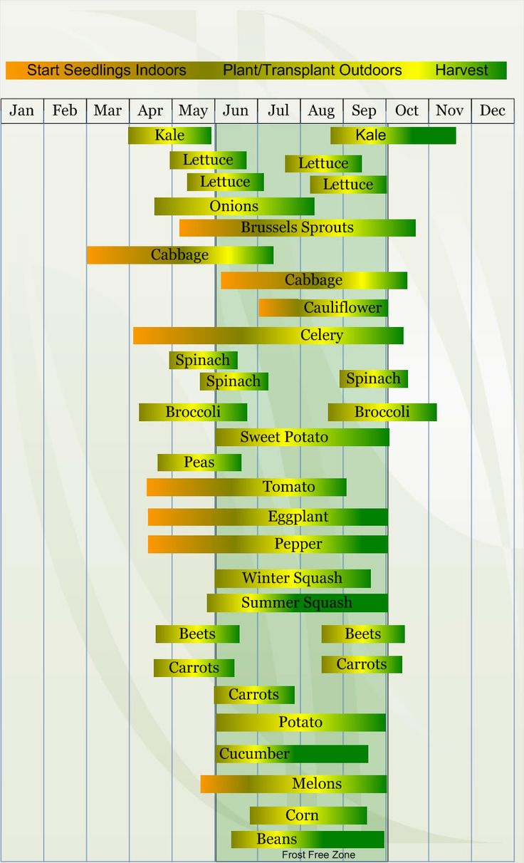 zone 5 planting and harvesting calendar
