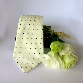 A sophisticated small dotted tie of black and white