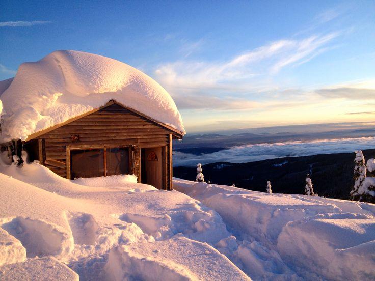 Mission, British Columbia ♥ cabin fun!