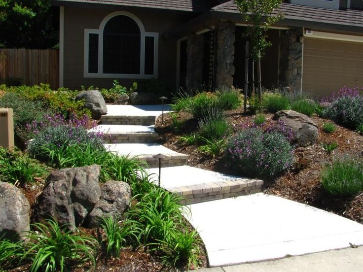 drought tolerant landscaping california | ... drought tolerant, colorful plants replace the lawn on either side of