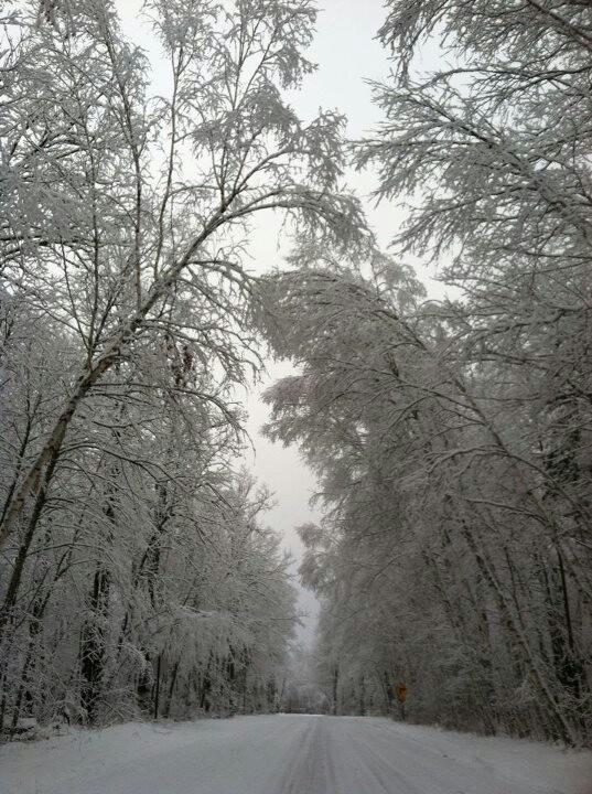 beautiful northern minnesota winter *Birch Ridge Resort*