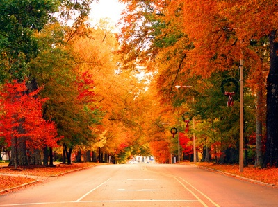 Autumn in Oxford, Mississippi by Bill Dabney