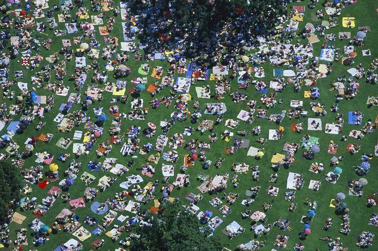 picknick at a live concert