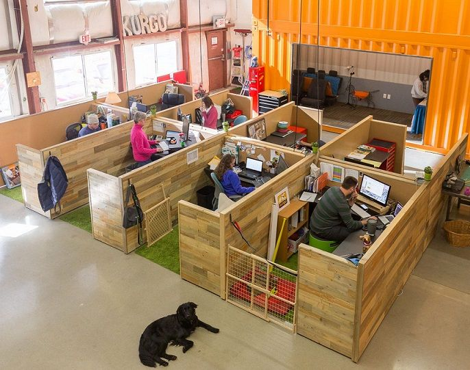 So You Want to Have Dogs in the Office? Top 10 tips from the World's Most Dog Friendly Office on how to make a successful dog-friendly workplace.