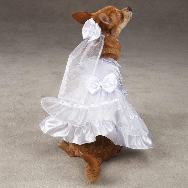 dog wedding dresses | Yappily Ever After Dog Wedding Dress With Veil - Dog Supplies