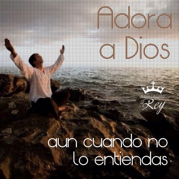 Adora a Dios aún cuando no lo entiendas, Él sabe lo que es mejor para ti. #Dios #Jehova #Jesus #Jesucristo #JesusCristo #Cristo #EspirituSanto #EspirituDeDios #Adorando #Adoracion #AdorandoADios #Fe #Aleluya #Amen #GloriaADios #FrasesDeDios #FrasesCristianas #Avivamiento #AdorandoalRey