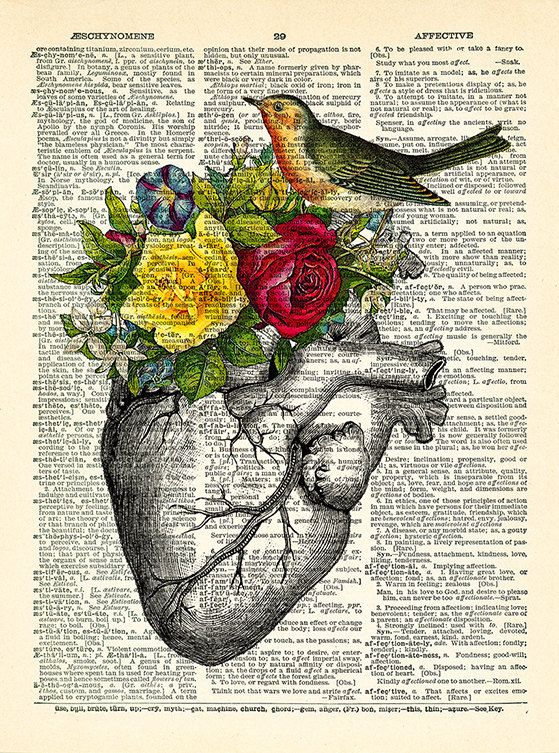 Anatomy Heart BIRD Art Print Rose Flowers, Human heart POSTER ...
