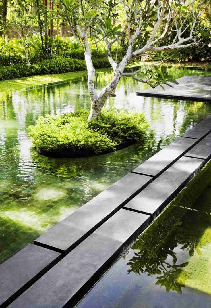 small island on pond of Big House with Beautiful Ponds as Colling Elements