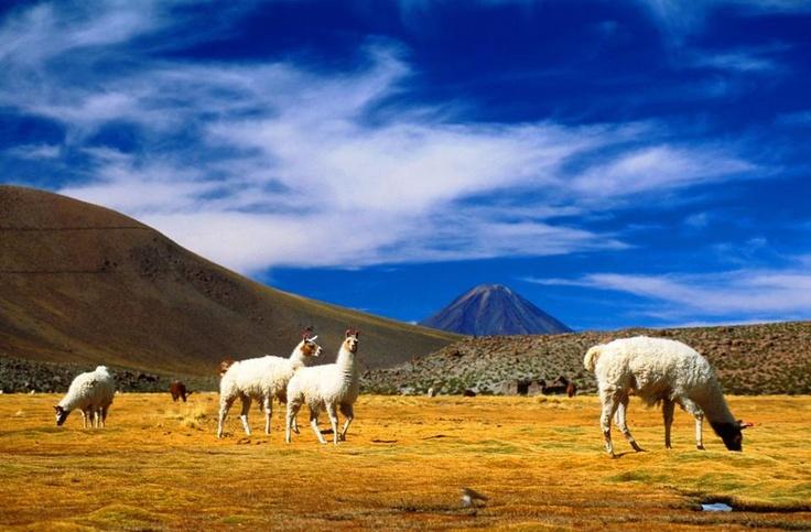 San Pedro de Atacama- Norte de CHILE