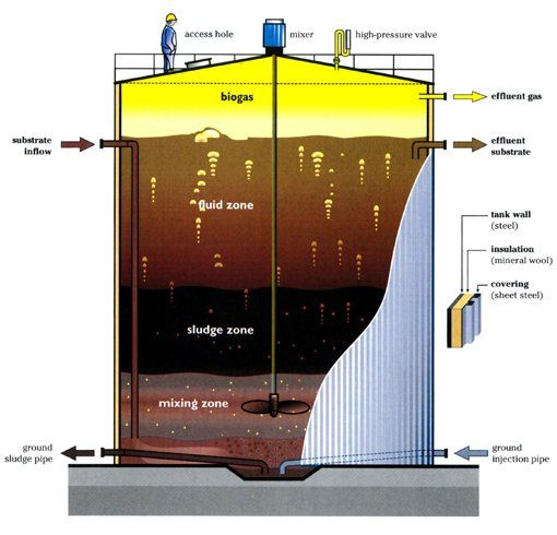 anaerobic digestion - Google Search