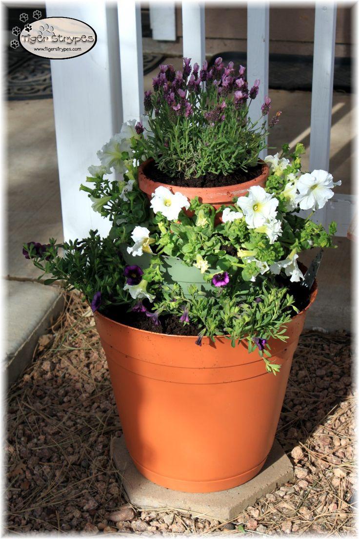 208 best Flowers \u0026 Gardening images on Pinterest   Gardening ...