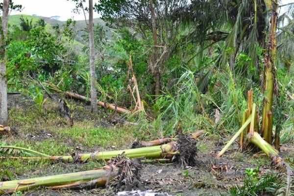 Cyclone Pam hits Vanuatu after causing damages in South Pacific nations Read more: http://www.bellenews.com/2015/03/13/world/asia-news/cyclone-pam-hits-vanuatu-after-causing-damages-in-south-pacific-nations/#ixzz3UGqod9OI Follow us: @bellenews on Twitter | bellenewscom on Facebook