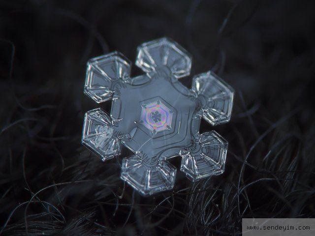 Kar taneleri görenleri hayran bıraktı - Resim 4