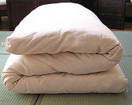 futon mattress - transition bed?