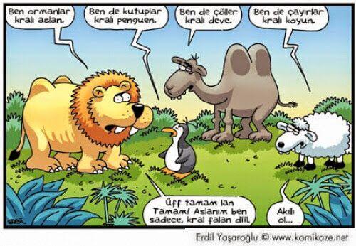 Karitatür Burda: Kral Kaynıyor ortalık :)