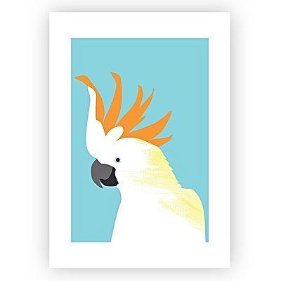 Citron-Crested Cockatoo Art Print