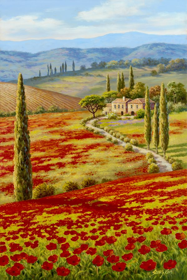 Red-Poppy-Field-by-Sung-Kim.jpg (600×900)