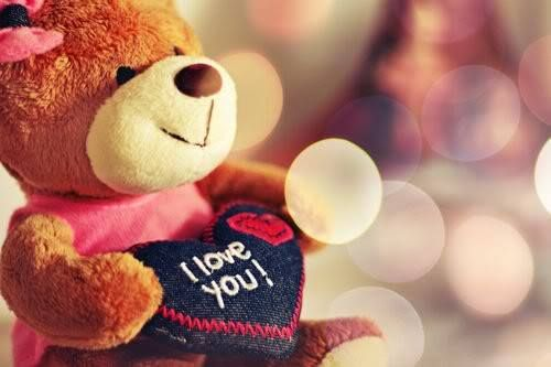 Beautiful teddy bears for teddy bear day.Happy teddy bear day wishes wallpapers…