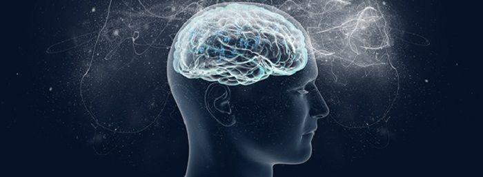 A memória é a capacidade de adquirir, armazenar e evocar as experiências e os fatos já ocorridos. Pode sofrer influência de fatores como nível de consciência, interesse na informação, humor e atenção. Tudo que aprendemos depende da capacidade de memorização. Na terceira idade é natural que a...