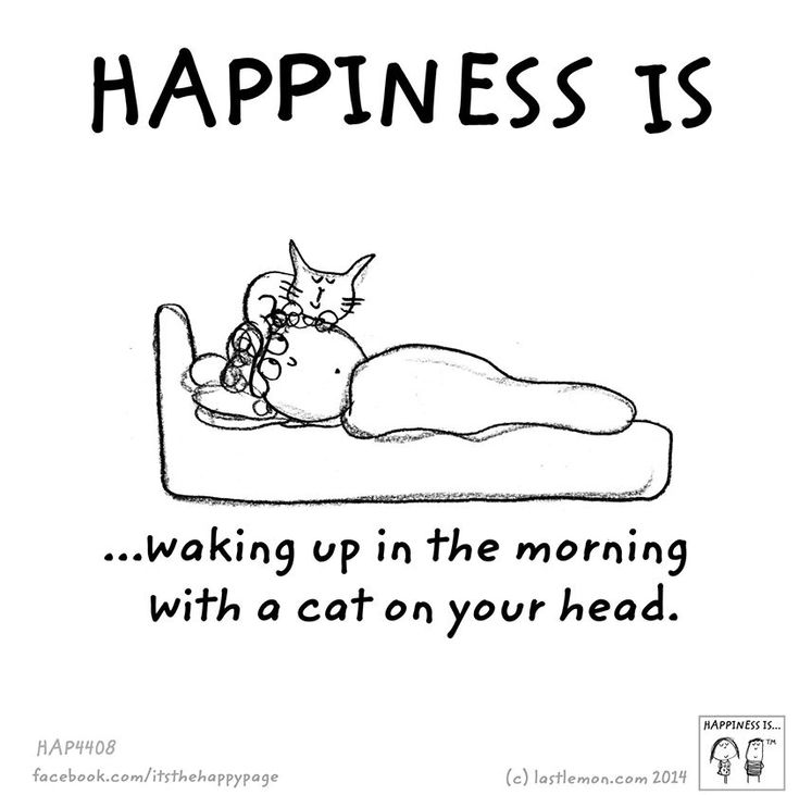 .This happens to me every night....I don't think I could actually sleep without my cat on my pillow above my head...the purring puts me to sleep....love my kitties <3