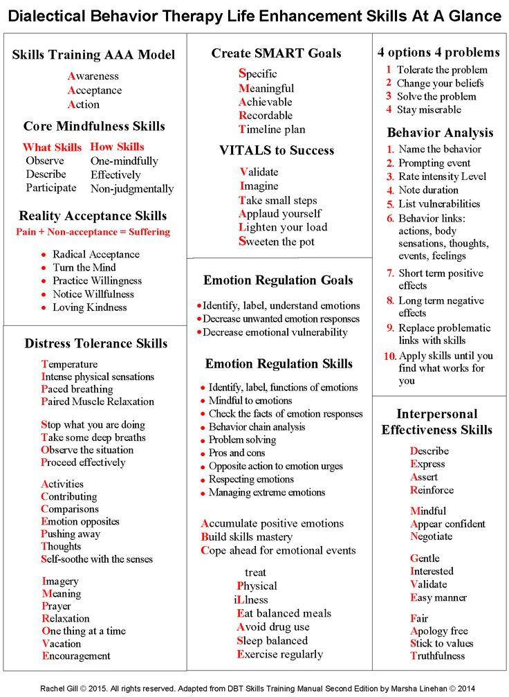 DBT Skills Training Modules Handouts & Worksheets DBT Skills at a Glance DBT Skills Quick Reference Sheet (by Rachel Gill) Core Mindfulness States of Mind Handout (by Rachel Gill) Mindfulness S...