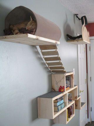 Aire de jeu pour chat installée au mur. Elle est composée de cubes, d'un pont souple en lattes de bois, d'une planche avec tunnel et d'une planche-couchette avec un rebord découpé en forme de chat - tutoriel