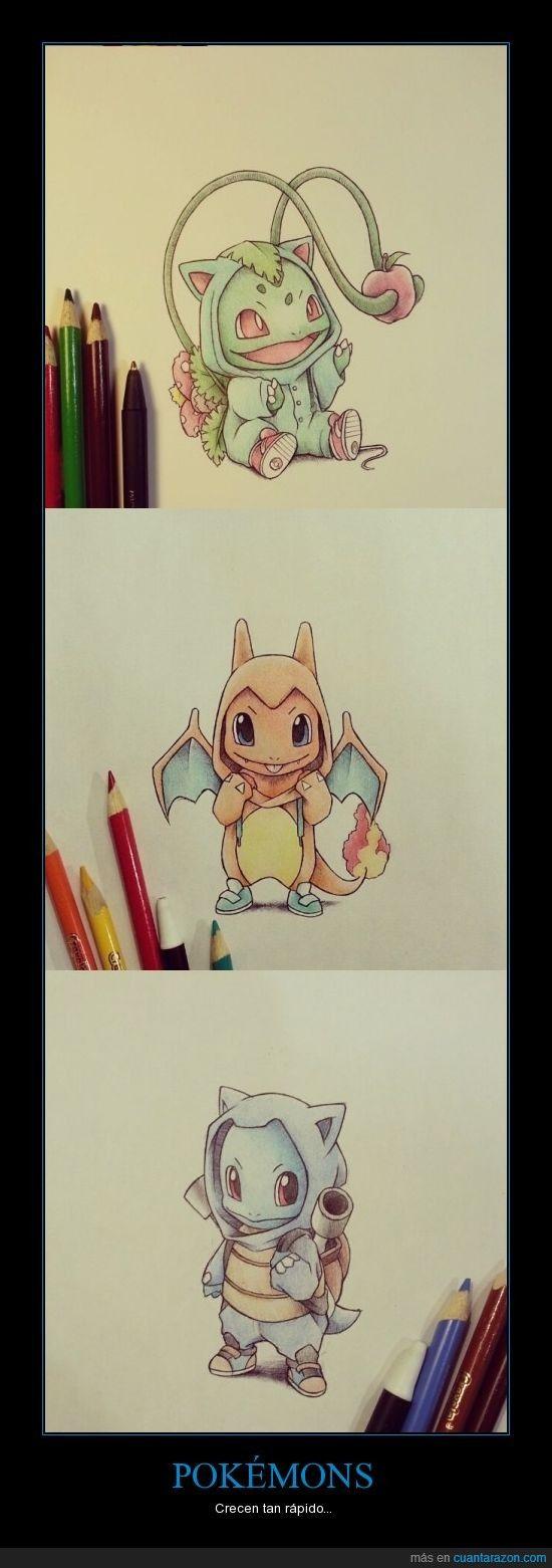 Bulbasaur - Charmander - Squirtle - Pokémon drawings.