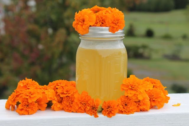 Mom's Frugal: Marigold Jelly