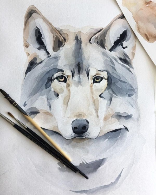 77 Best Watercolor Art Images Aquarell Ideen Dog Paintings