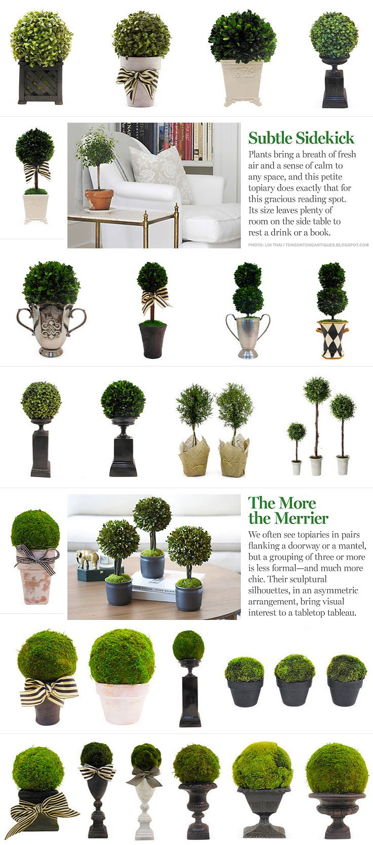 INSPIRATION :: Ideas for topiary arrangements...from #OneKingsLane. Moss balls & boxwood, pots & urns...