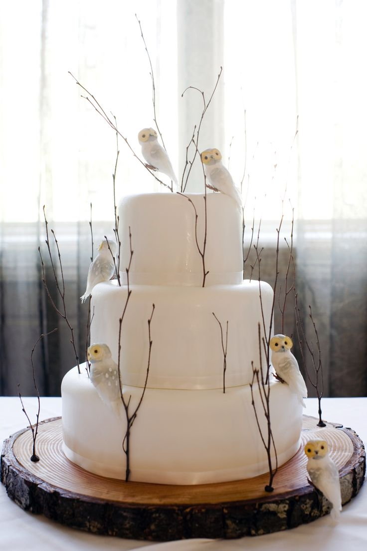 Winter wedding cake - 'twigs' with tiny Snowy 'Owls' on a rustic wood base - so unusual and lovely!