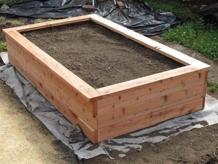 BUILDING A PLANTER BOX AND PLANTING FRUITS AND VEGGIES