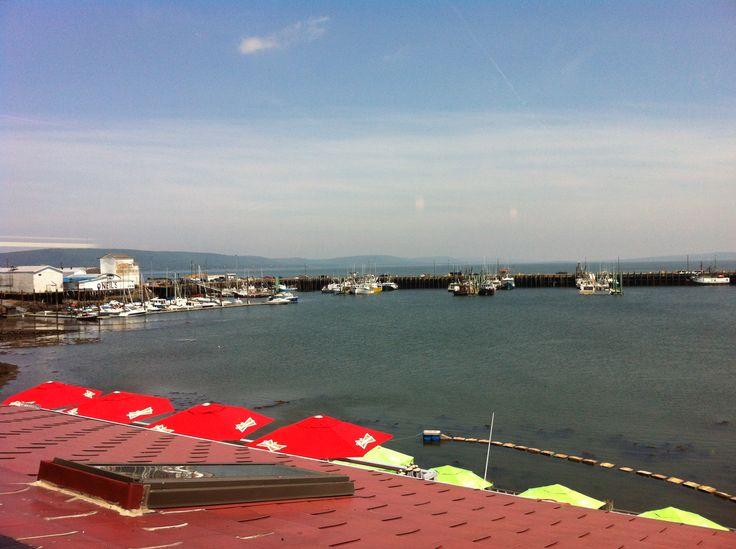 Digby Wharf sunny days