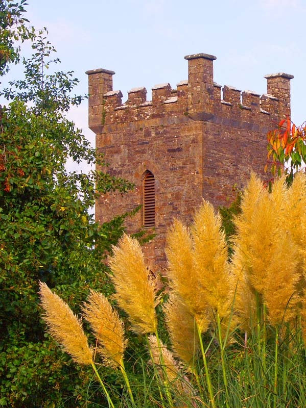 Ballingarry castle tower, Ireland