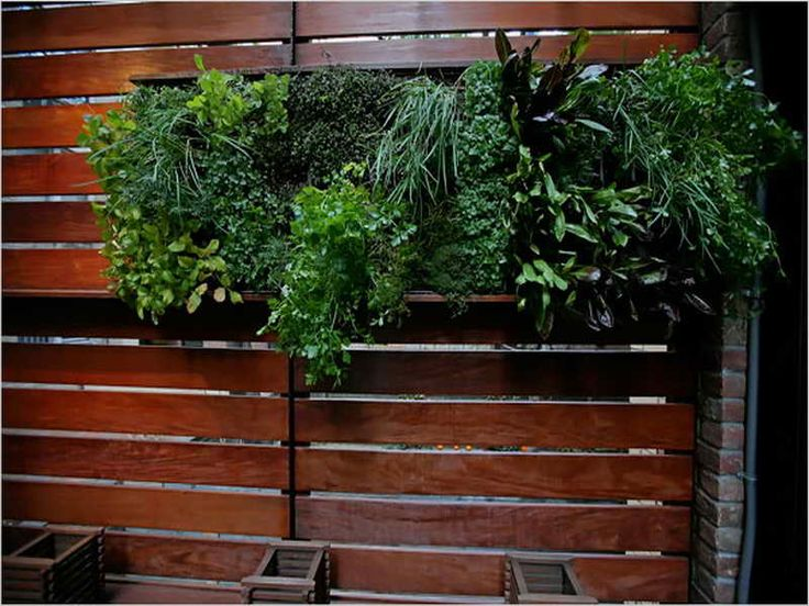24 Best Images About Indoor Living Wall Planters Ideas On 400 x 300