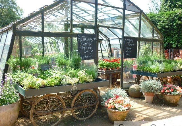 76 best Inspiration...For Garden Cafe images on Pinterest | Tents ...