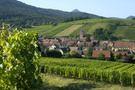 Riquewihr, at the foot of Grand Cru Schoenenbourg