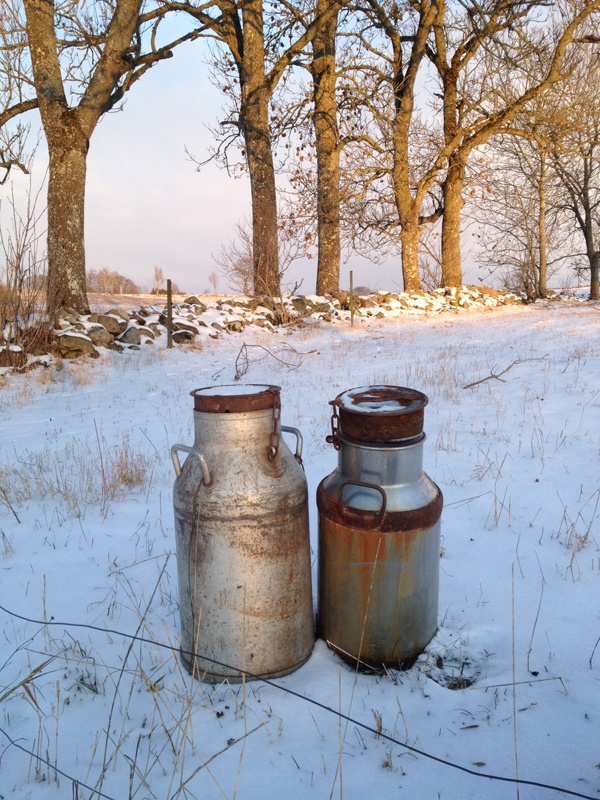 Milk buckets from the 60's.  Skåne, Sweden.