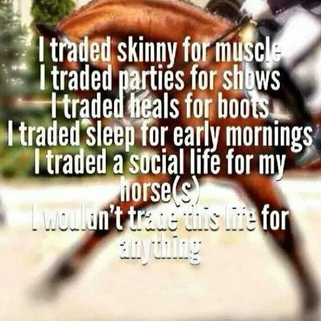 Love my horse and show life with horses.