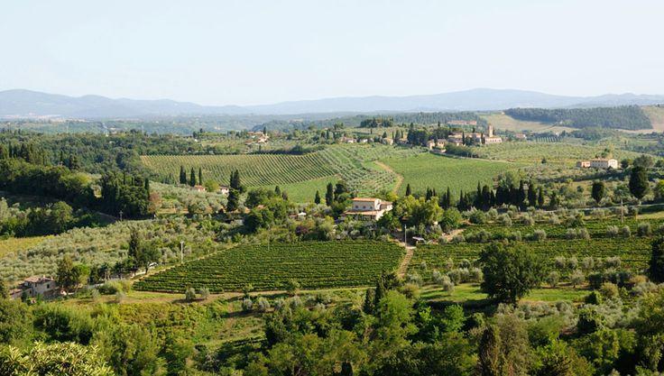 Toscana. Foto de Olivia Sampedro