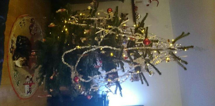 Juletræ anno 2013